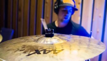 The Stringers, In Studio